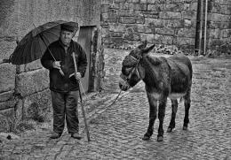 O homem e o burro