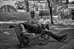 Descansando à sombra