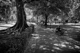 Jardim da Estrela - Lisboa