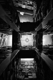 Babel – ou o castigo de ser só