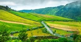 Ilha de S. Miguel - Açores