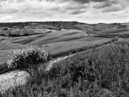 Cloudy on Pienza