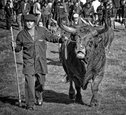 Santos - Feira do gado - Chaves