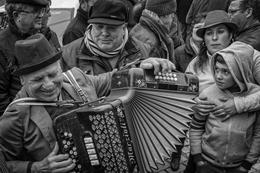 O homem da concertina