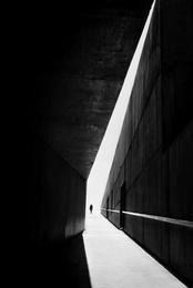 The walking shadow