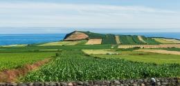 Ilha Terceira - Açores