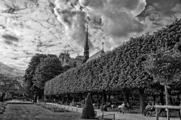 Jardim parisiense