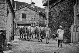Na aldeia